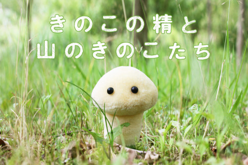kinokonosei_top-1024x682
